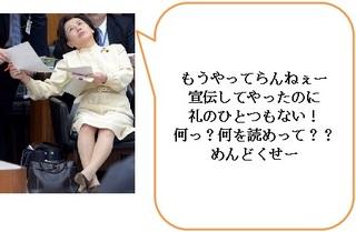 田中真紀子 国会